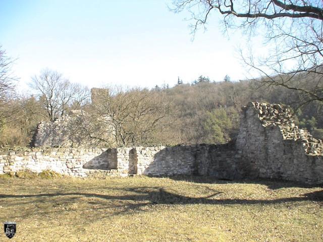 Burg Altenbaumburg, Altenbaumberg