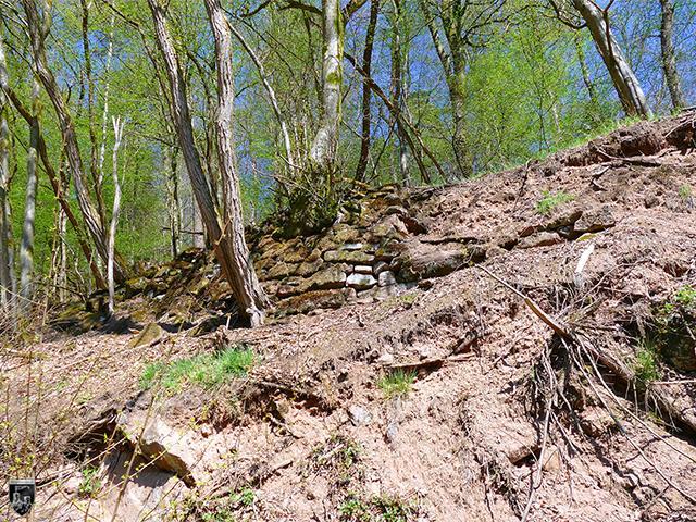 Burg Diemerstein - Trockenmauerwerk im Wald westlich der Anlage. Vermutlich Reste des 19. Jahrhunderts.