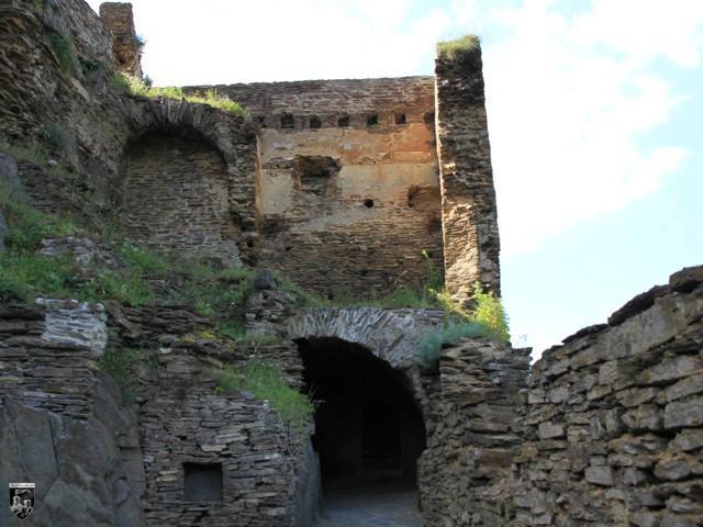 Burg Ehrenburg