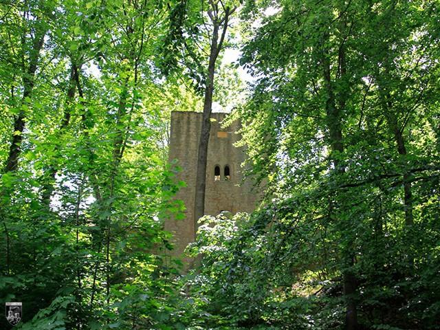 Burg Hambach, Hambacher Schloss, Maxburg, Kästenburg