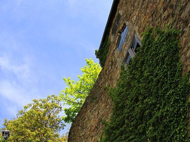 Burg Katzenelnbogen