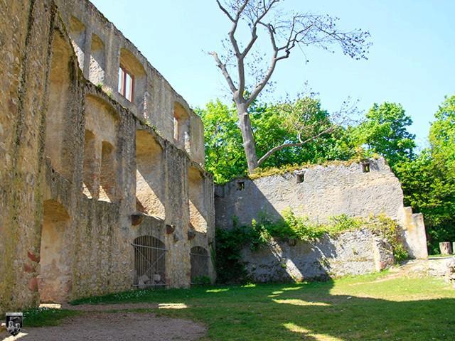 Burg Landskron