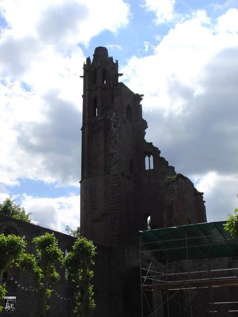 Burg Limburg, Salierburg