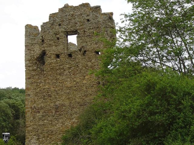 Burg Lewenstein, Lewinstein, Löwenstein in Rheinland-Pfalz