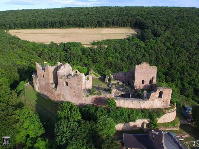 Burg Montfort in Rheinland-Pfalz