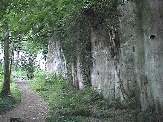 Burg Neukastel