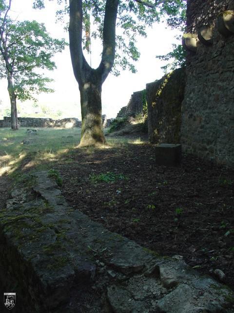 Burg Neuwolfstein