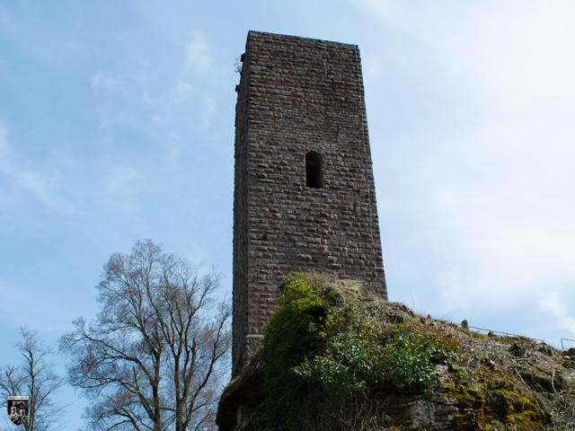 Burg Scharfenberg in Rheinland-Pfalz