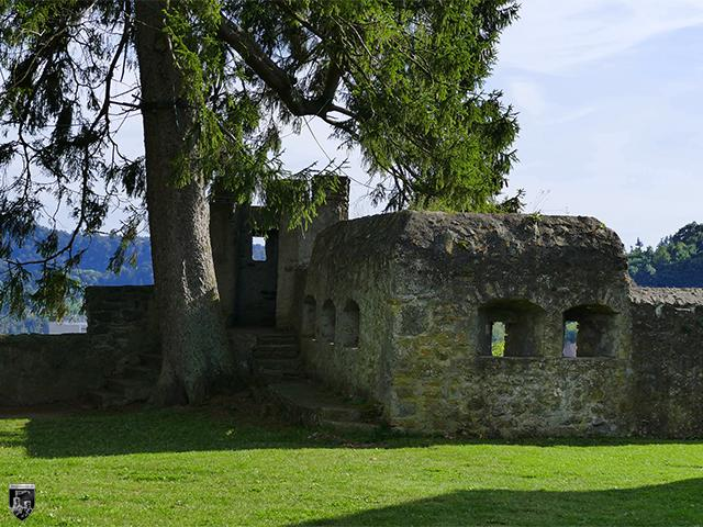 Schloss Daun, Kurfürstliches Amtshaus in Rheinland-Pfalz