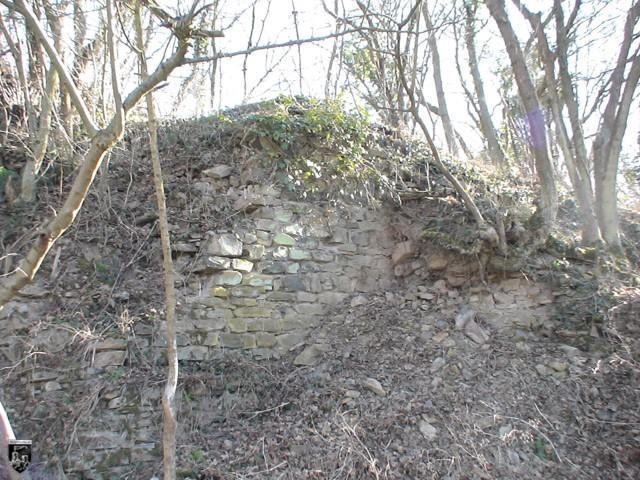 Burg Sponheim, Burgsponheim