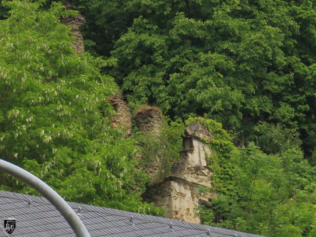 Steinsches Schloss Sayn, Burg Stein in Rheinland-Pfalz