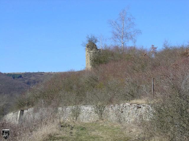 Burg Treuenfels
