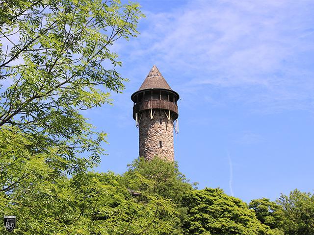 Burg Wildenburg im Hunsrück in Rheinland-Pfalz