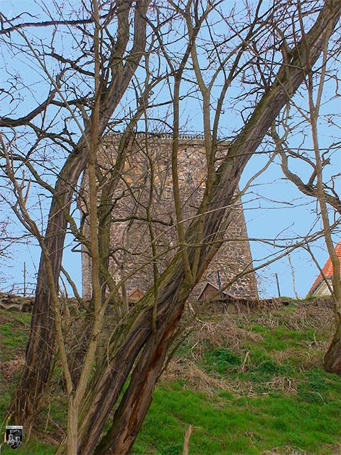 Burg Rogätz, Klutturm