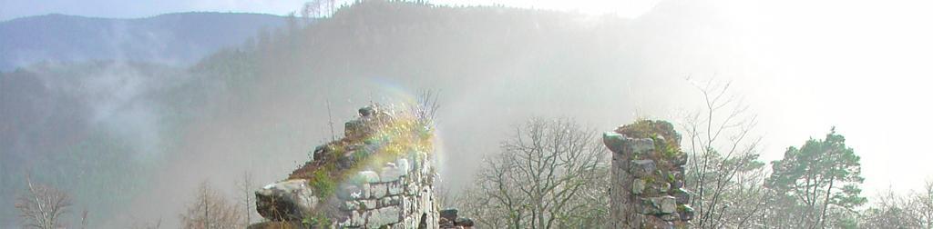 Die Burgen in Elsass