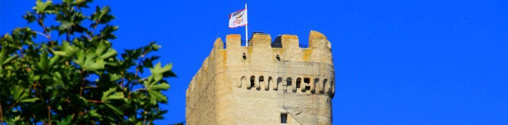Die Burg in ihrer Entwicklung