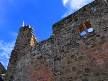 Burg Wilenstein, Willenstein 11