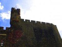 Burg Reichenstein, Falkenburg