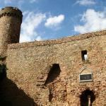 Auerbacher Schloss, Burg Auerburg