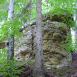 Burg Blumegg