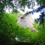 Burg Boll, Neu Tannegg, Neu-Tannegg