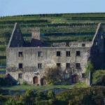 Burg Burkheim, Schloss Burkheim