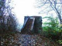 Burg Freienwalde, Weinberg