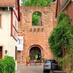 Burg und Kaiserpfalz Gelnhausen