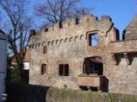Burg Handschuhsheim, Tiefburg