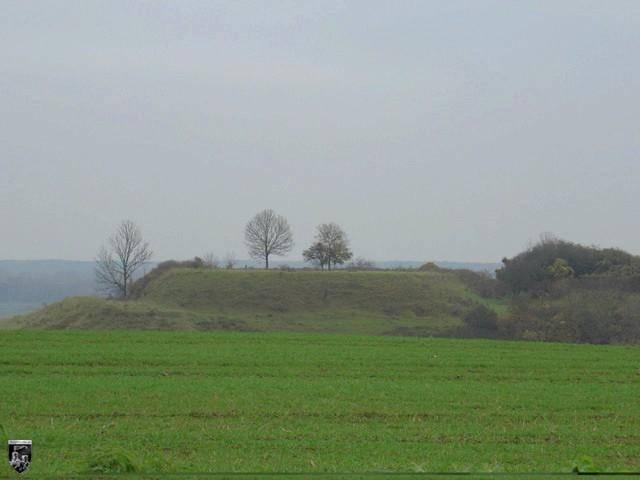 Burg Hohenfinow