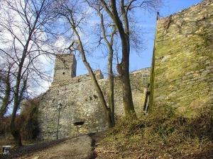 Burg Königstein in Hessen