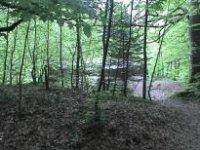 Luginsfeld
