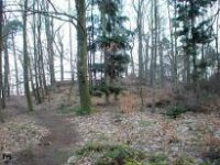Rotenfels, Rothenfels