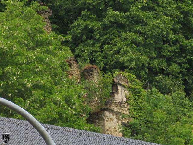 Steinsche Burghaus Sayn, Burg Stein