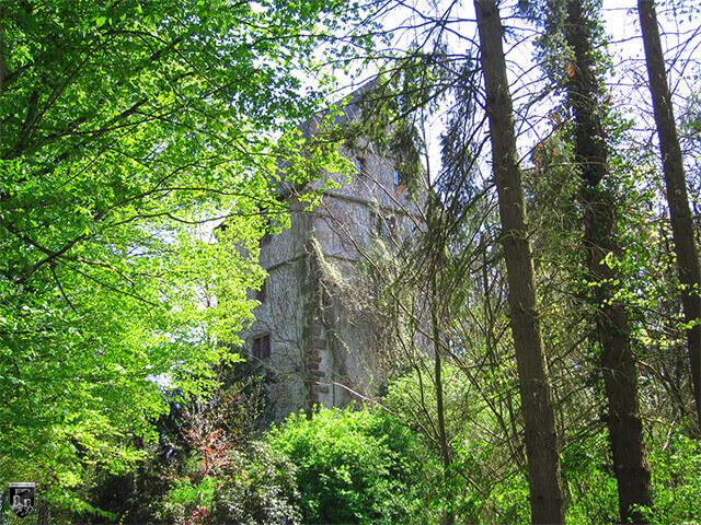 Burg Gröbern, Gröbernturm