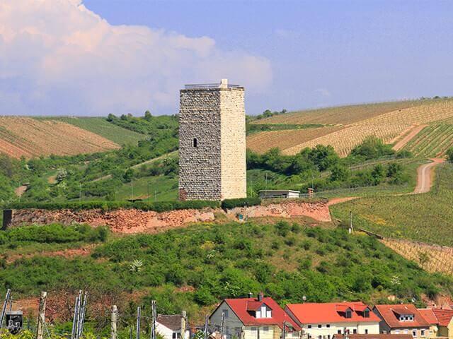 Burg Schwabsburg